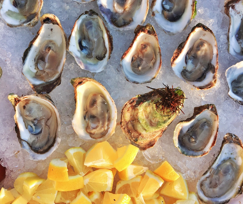 Miami Oyster Week