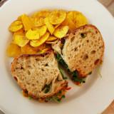 chickensaladsandwich2