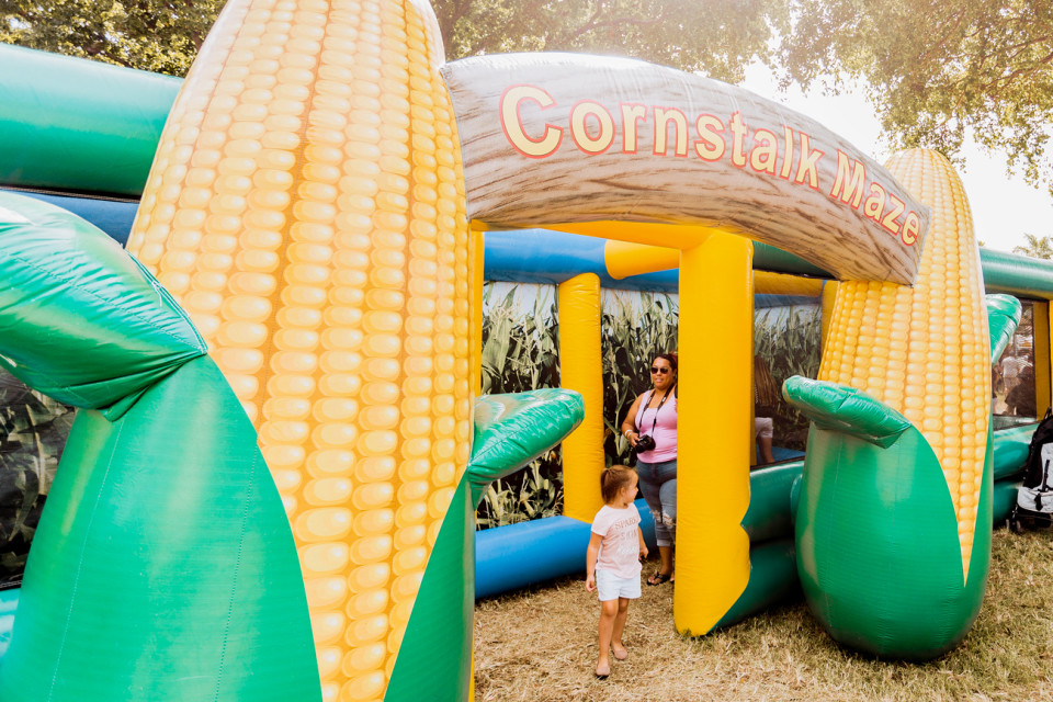 Coconut-Grove-Pumpkin-Patch-Cornstalk-Maze-Festival-960x640.jpg