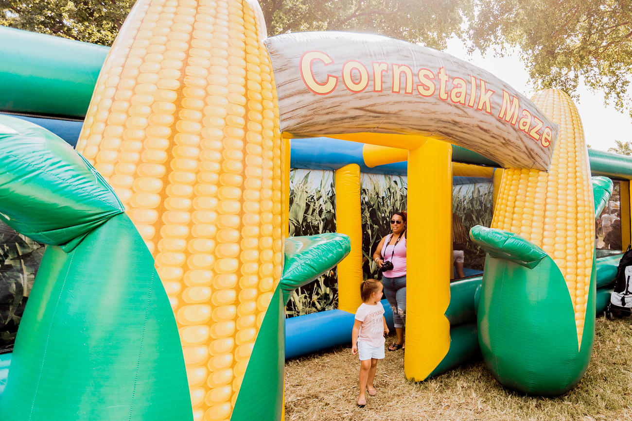 Coconut Grove Pumpkin Patch Festival is back this Weekend